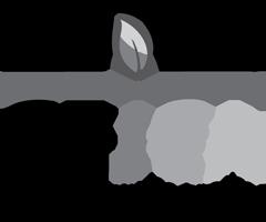 Logo CEJEA